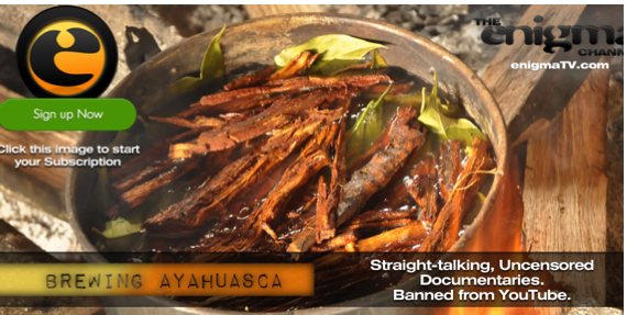 Step by step How to Brew Ayahuasca TV show