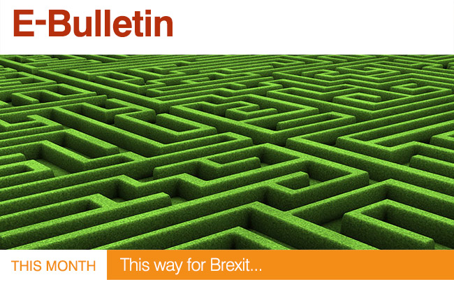 This Month : This way for Brexit...